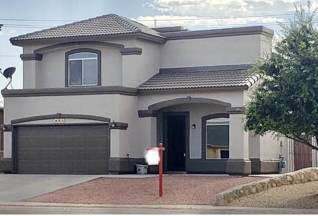821 Desert Bush Drive, Horizon City, TX 79928 (MLS #842538) :: Preferred Closing Specialists