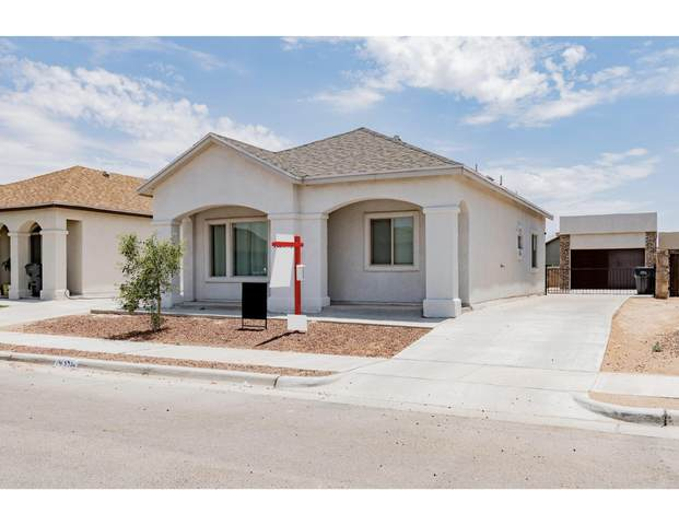 14356 Seth Payne Drive, Horizon City, TX 79928 (MLS #846986) :: Red Yucca Group