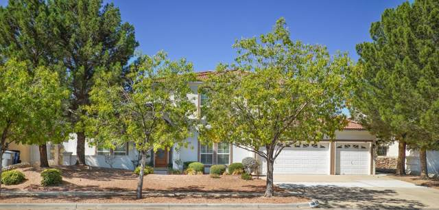 1108 Wind Ridge Drive, El Paso, TX 79912 (MLS #814608) :: The Matt Rice Group