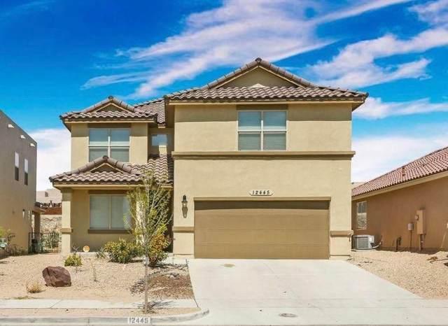 12445 Chamberlain Drive, El Paso, TX 79928 (MLS #846253) :: The Matt Rice Group