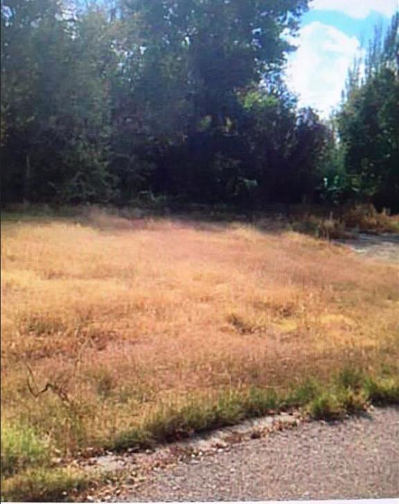 4819 Vista Del Monte-A Street, El Paso, TX 79922 (MLS #801200) :: Mario Ayala Real Estate Group