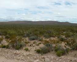 TBD Tbd, Sierra Blanca, TX 79851 (MLS #819660) :: Preferred Closing Specialists