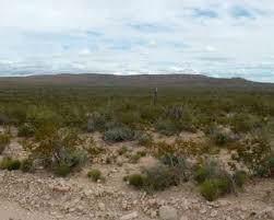 TBD Tbd, Sierra Blanca, TX 79851 (MLS #819660) :: The Matt Rice Group