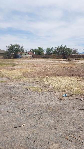 1018 Kimberley Street, El Paso, TX 79932 (MLS #820291) :: Mario Ayala Real Estate Group