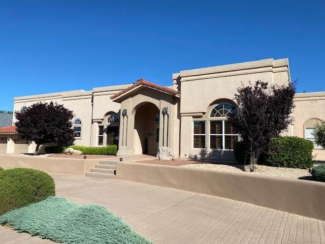 2423 Desert Hills Drive, Alamogordo, NM 88310 (MLS #828097) :: Mario Ayala Real Estate Group
