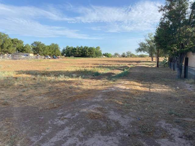 0 Bovee Rd, Socorro, TX 79927 (MLS #830867) :: The Purple House Real Estate Group