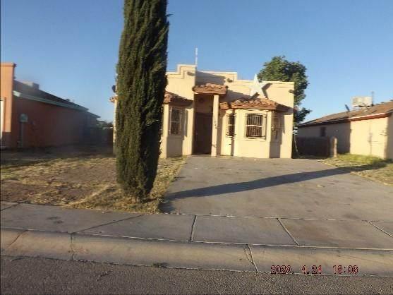 11444 Casitas, San Elizario, TX 79849 (MLS #833131) :: Mario Ayala Real Estate Group