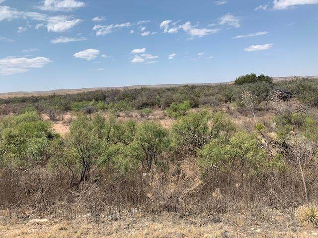000 Sierra Prieto, Sierra Blanca, TX 79851 (MLS #834235) :: Mario Ayala Real Estate Group