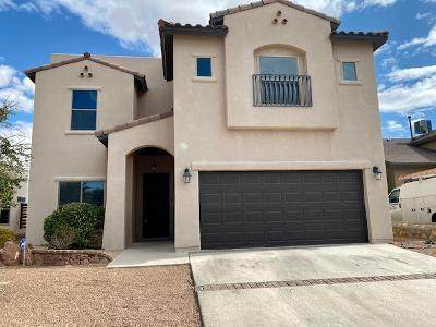 3160 Sarina Circle, El Paso, TX 79938 (MLS #837344) :: The Matt Rice Group
