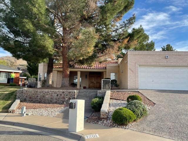1201 Cerrito Alegre Lane, El Paso, TX 79912 (MLS #837562) :: The Purple House Real Estate Group