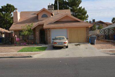 1848 Polly Harris Drive, El Paso, TX 79936 (MLS #838406) :: Preferred Closing Specialists
