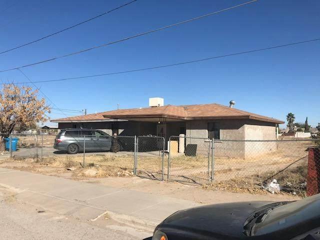 13030 Gladiola Drive, San Elizario, TX 79849 (MLS #840080) :: Preferred Closing Specialists