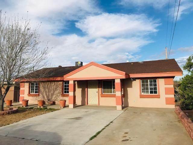 248 Pyrite Drive, El Paso, TX 79932 (MLS #842025) :: Mario Ayala Real Estate Group