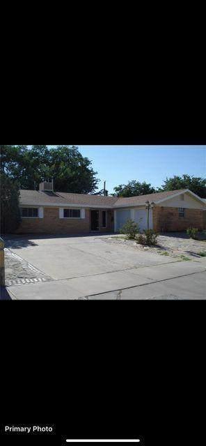 9921 Audobon Street, El Paso, TX 79924 (MLS #847509) :: The Matt Rice Group