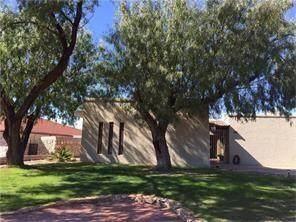 1670 Common Drive, El Paso, TX 79936 (MLS #847516) :: The Matt Rice Group