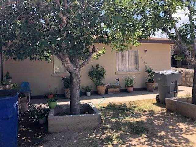 2720 Morehead Avenue, El Paso, TX 79930 (MLS #849695) :: Red Yucca Group