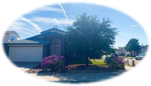 5757 Schwarzkopf Drive, El Paso, TX 79934 (MLS #849832) :: Red Yucca Group