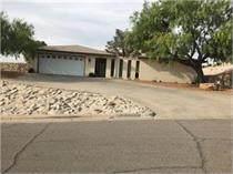 3204 Stone Edge Road, El Paso, TX 79904 (MLS #849921) :: Mario Ayala Real Estate Group