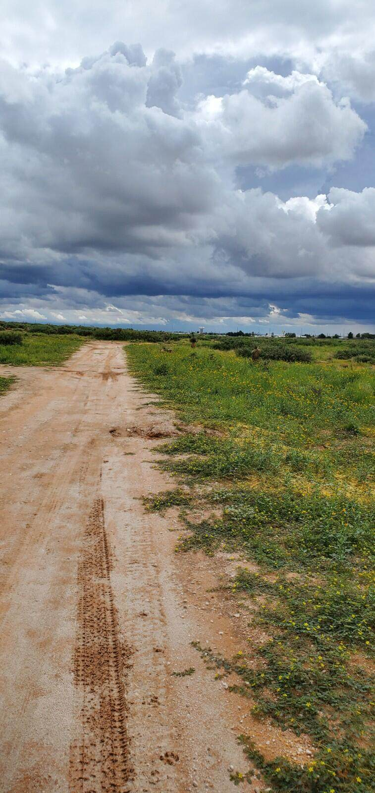 4361 Hovland Lane - Photo 1