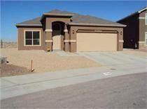 14339 Alma Point Drive, El Paso, TX 79938 (MLS #852262) :: Summus Realty