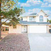 3625 Red Cloud Place, El Paso, TX 79936 (MLS #853948) :: Mario Ayala Real Estate Group