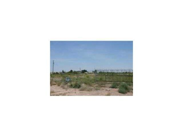 204 Paseo Real, Chaparral, NM 88081 (MLS #518803) :: Mario Ayala Real Estate Group
