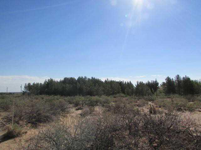 2751 Quitman, Chaparral, NM 88081 (MLS #587785) :: Preferred Closing Specialists