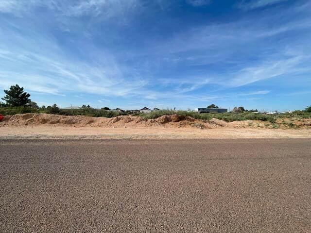 13330 Boots Green, El Paso, TX 79927 (MLS #849628) :: The Matt Rice Group