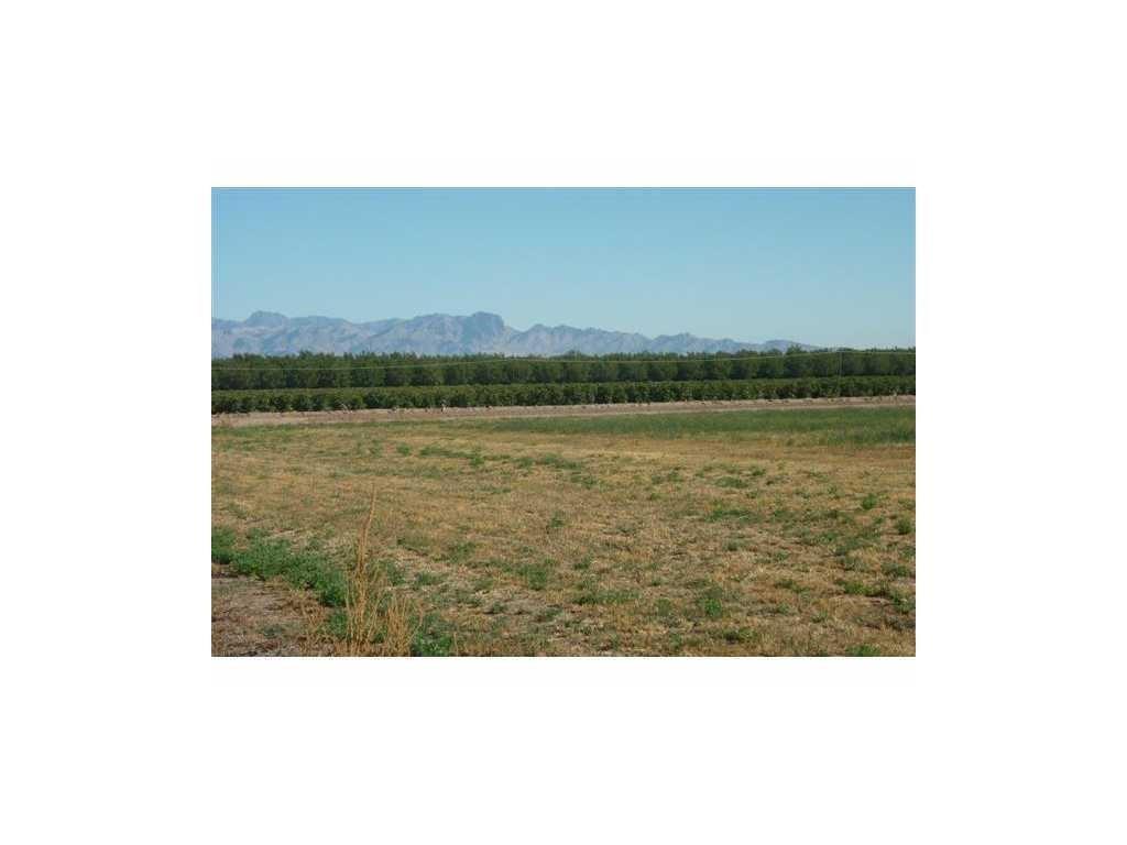 1350 Green Meadow - Photo 1