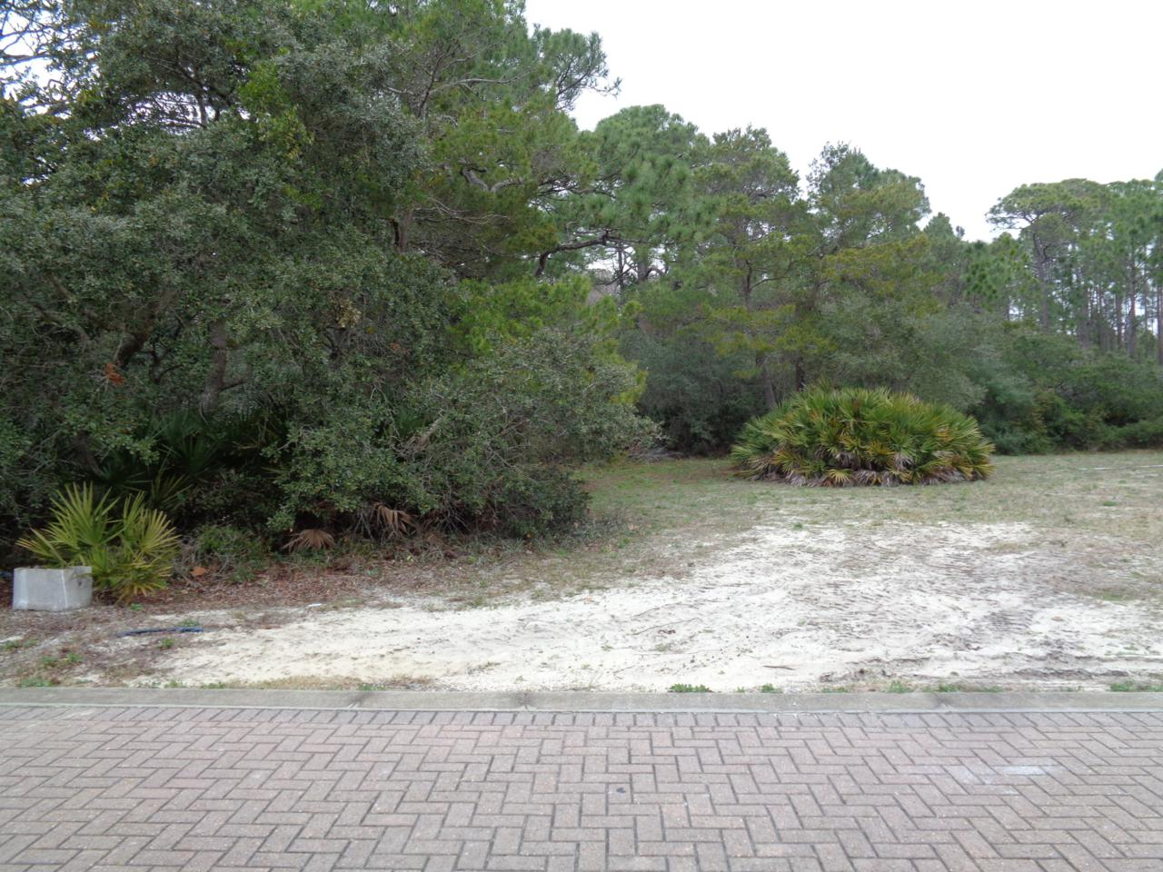 Lot 19 Sand Oaks Circle - Photo 1