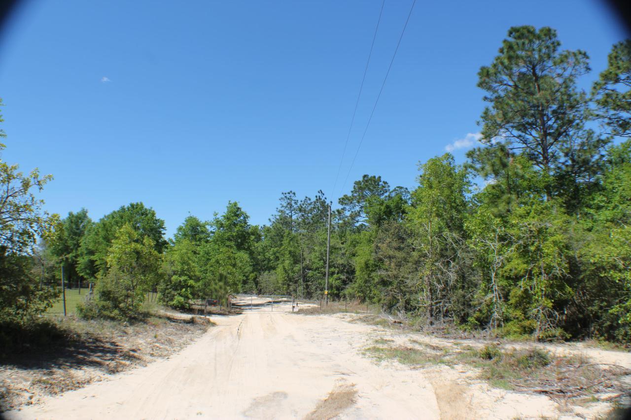 23 AC Bear Creek Road - Photo 1