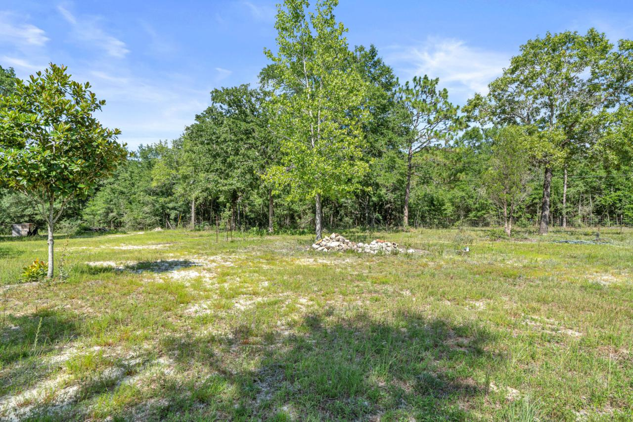 3925 Bear Creek Road - Photo 1