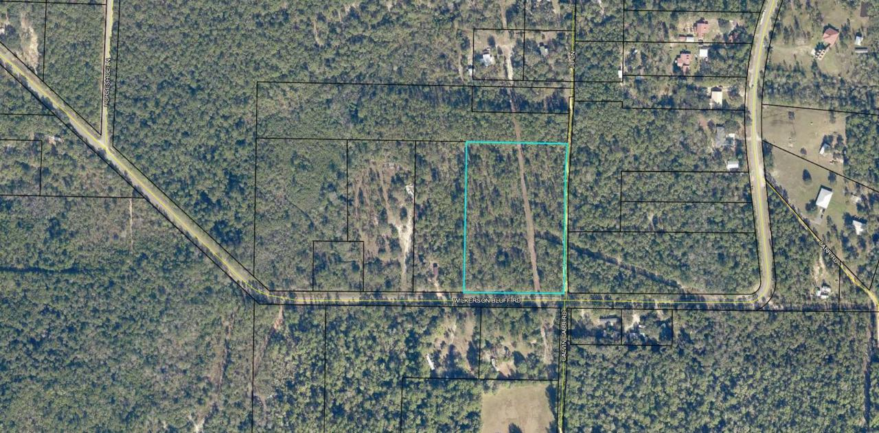8.9 AC Wilkerson Bluff Rd - Photo 1