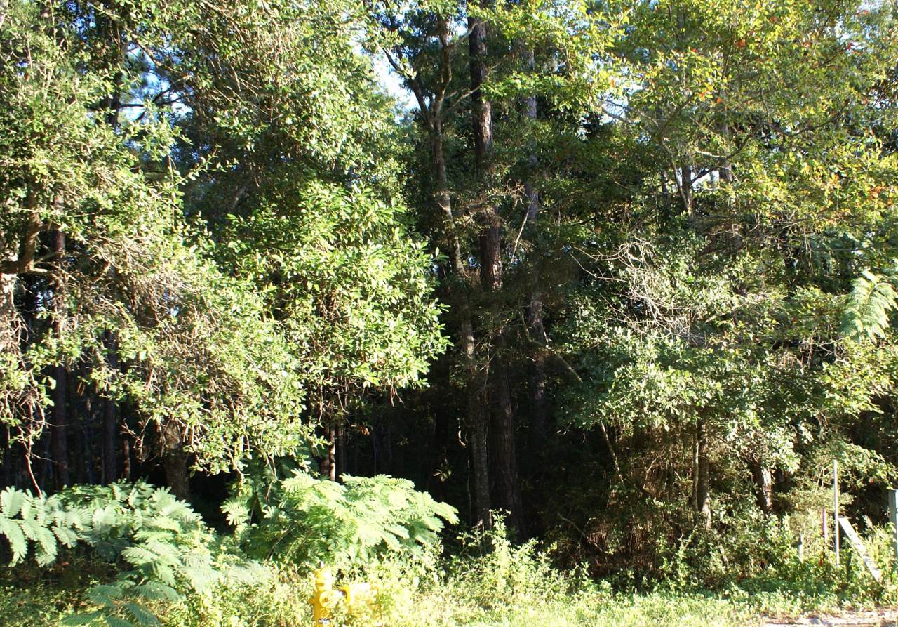 Lot B Bayshore Drive - Photo 1