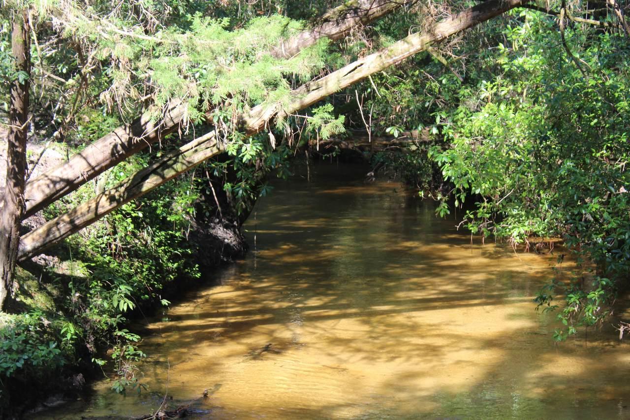 451 Natural Bridge Road - Photo 1