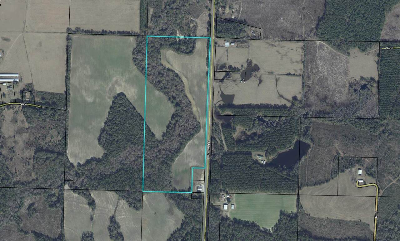 145.5 Acre Hwy 81 North - Photo 1