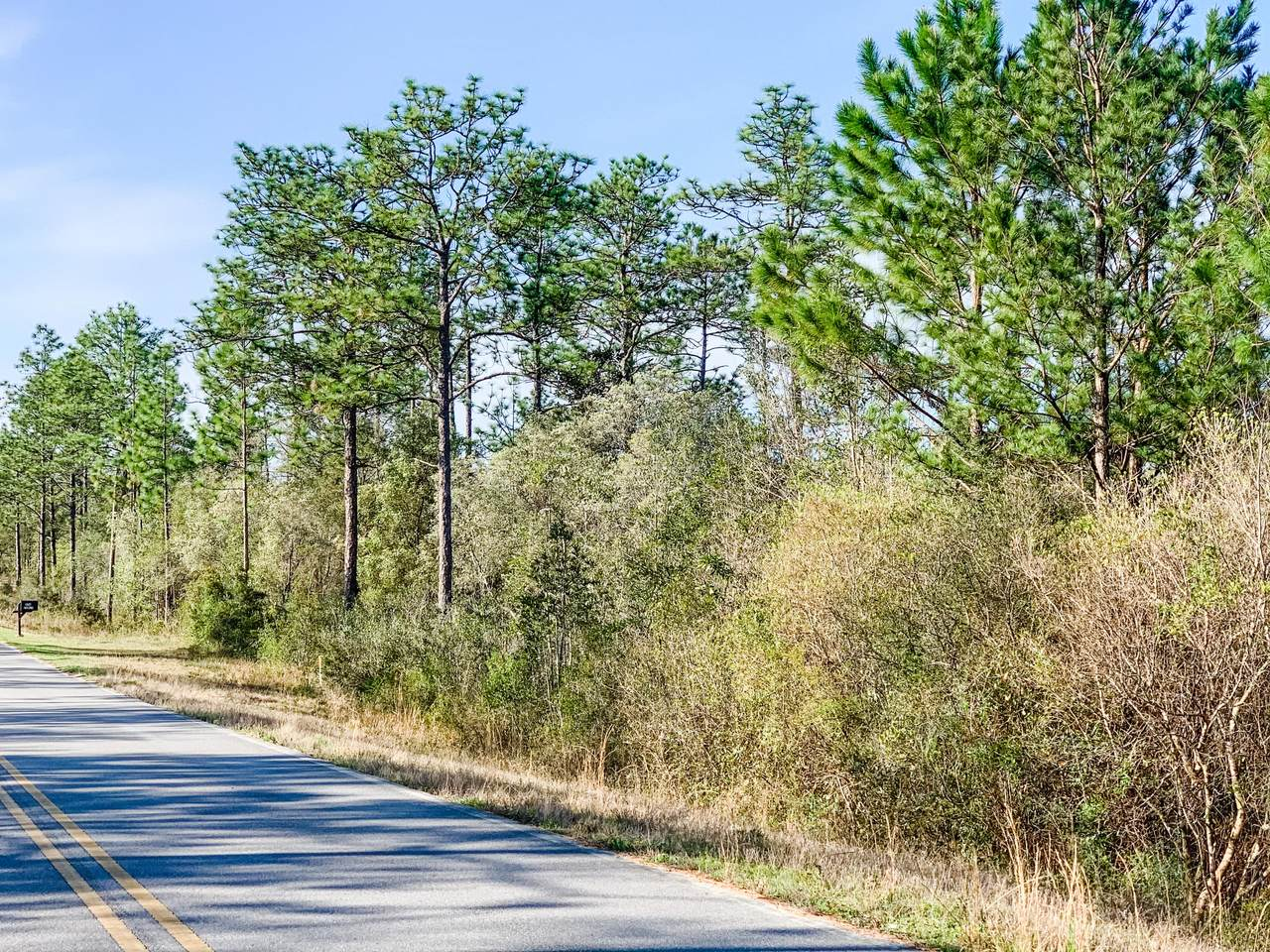 Lot 96 Blue Ridge Boulevard - Photo 1