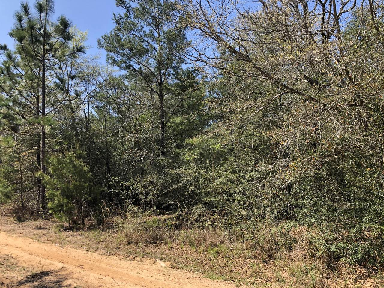 Lot 16 Wagner Dr. - Photo 1