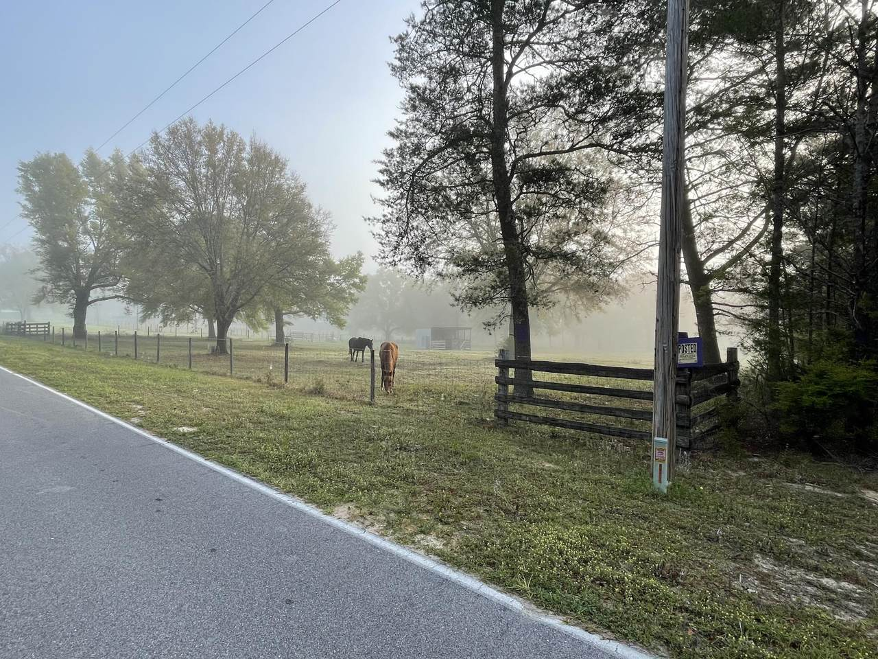8.81 AC High Lonesome Road - Photo 1