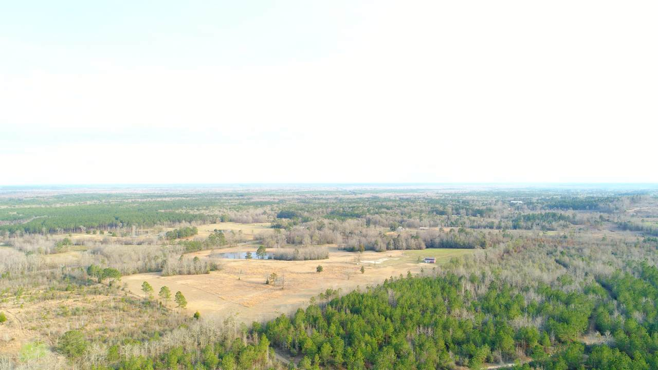 250 Acres State Hwy 81 - Photo 1