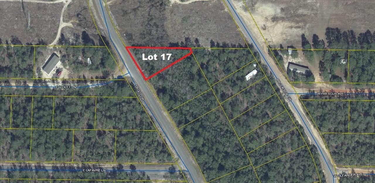 Lot 17 Trout Drive - Photo 1