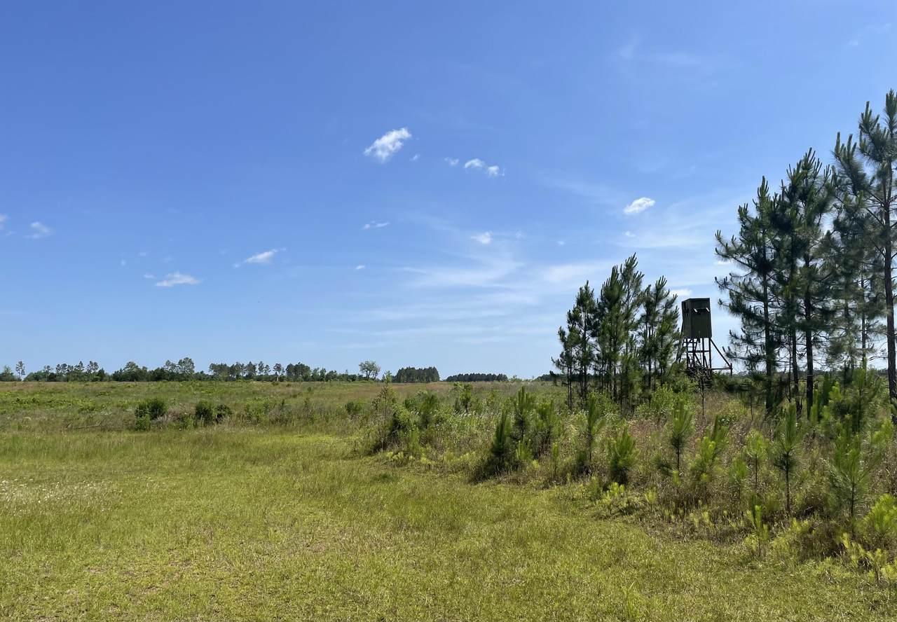 79 acres Bob Brooks Road - Photo 1