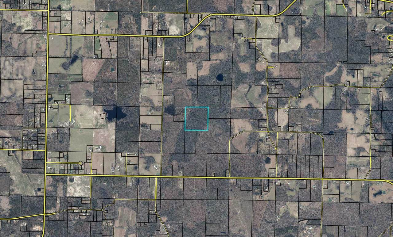 80 Acres Wes Nelson Road - Photo 1