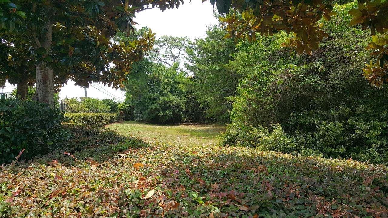 1834 Snapdragon Drive - Photo 1