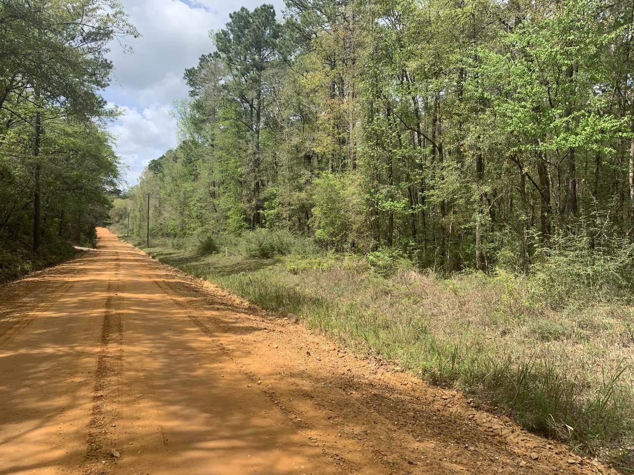 1341 Sandy Creek Rd - Photo 1