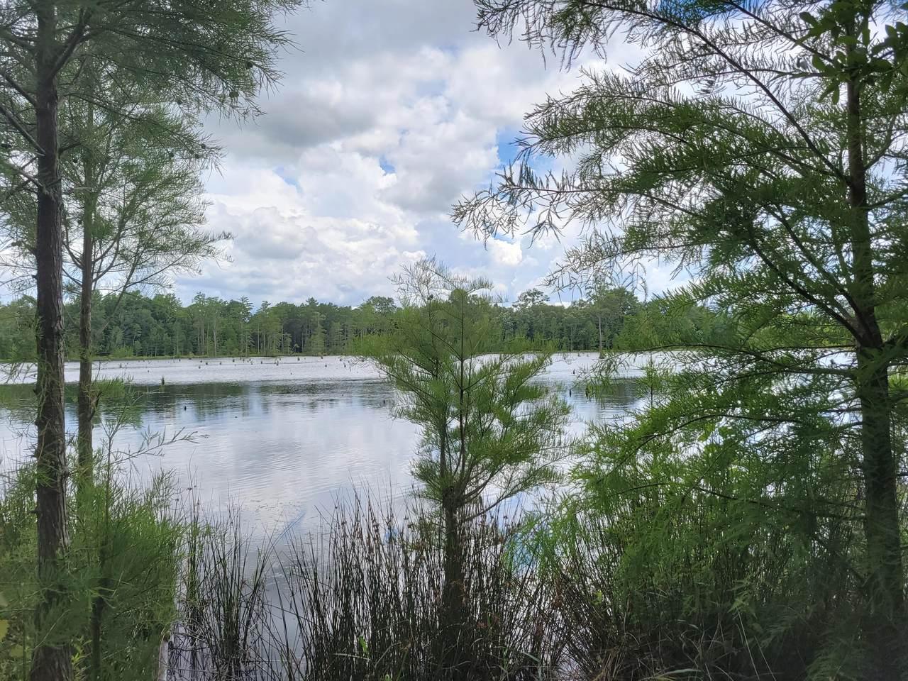 10 acres W. Suttles Road - Photo 1