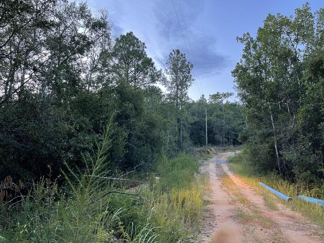3.8+/- AC Cotton Creek Road - Photo 1