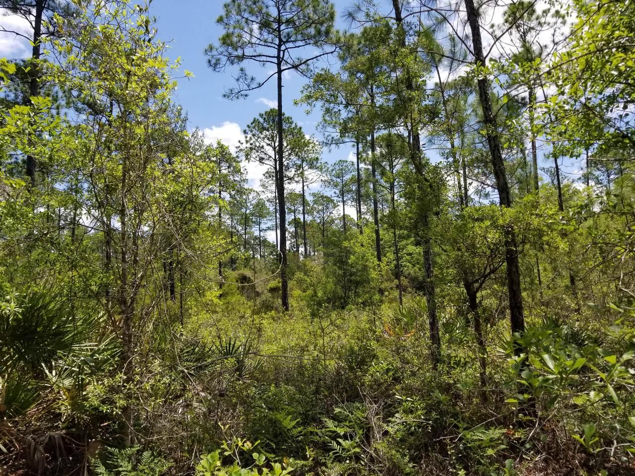 5. 6 acres Mallett Bayou Rd - Photo 1