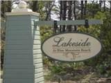 38 Lakeside At Blue Mountain - Photo 3