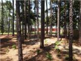 1042 Driftwood Point Road - Photo 22